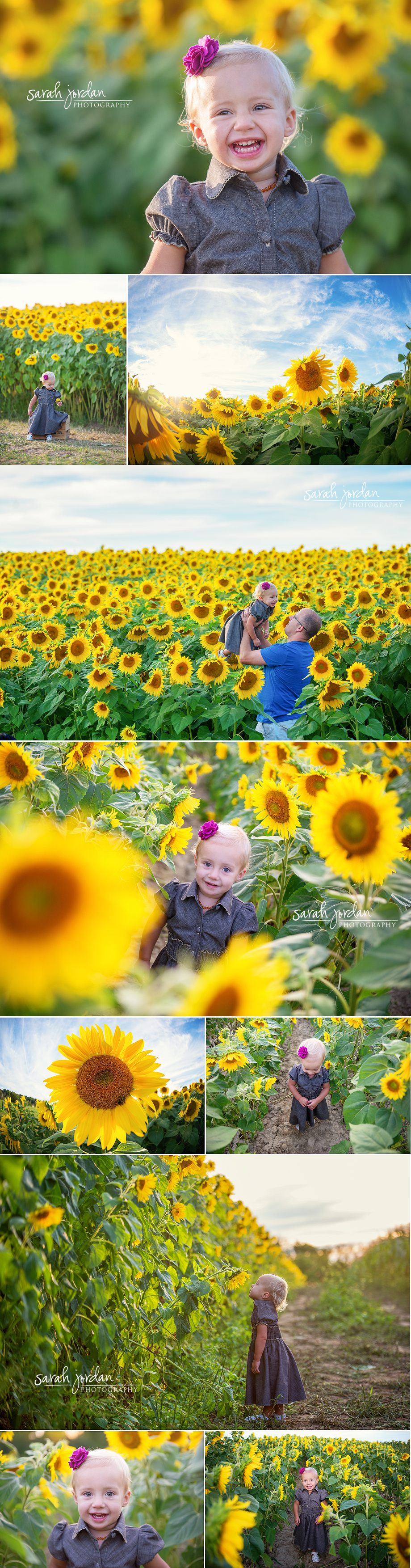 Sunflower photo session