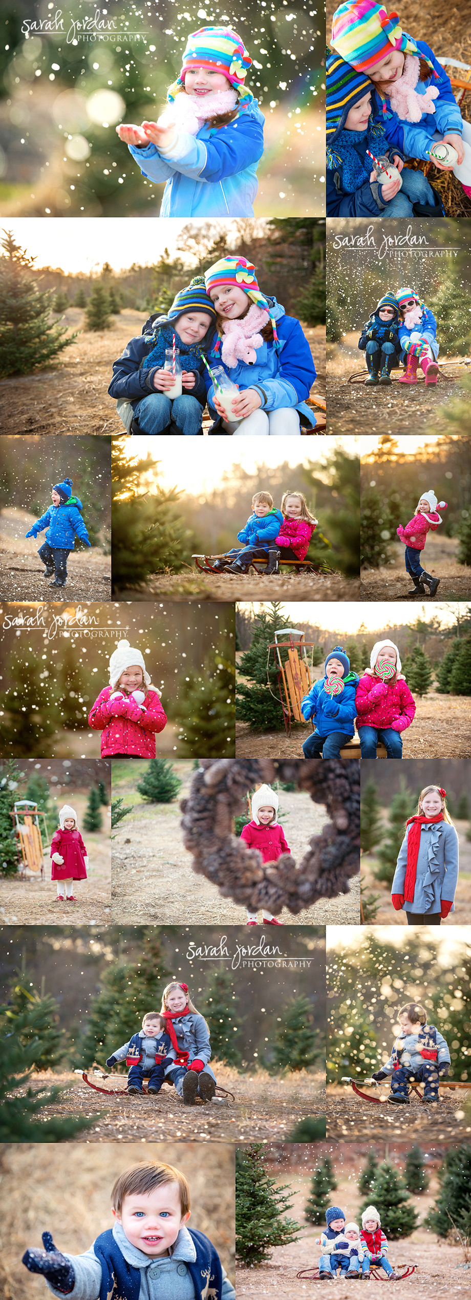 Holiday mini sessions 1