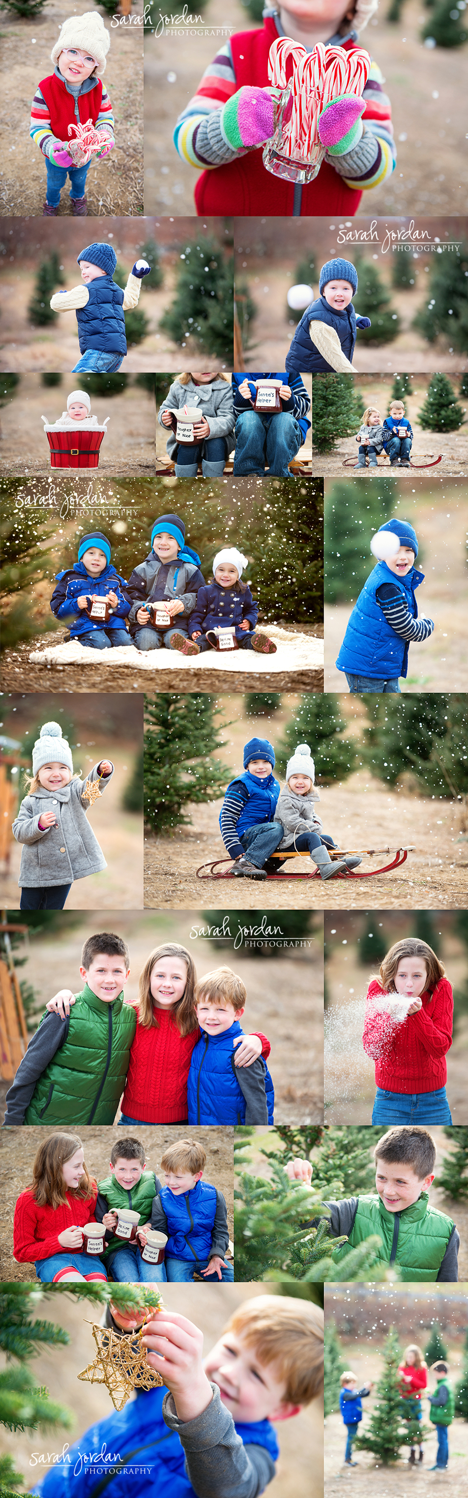 Holiday mini sessions 2